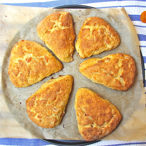 Honey Apricot Scones - The Wimpy Vegetarian