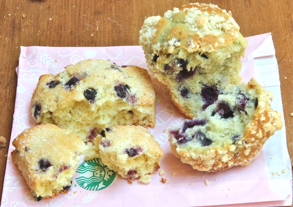 Starbuck's blueberry muffins